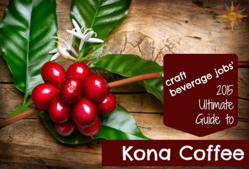 Guide to Kona Coffee