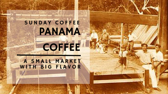 panama coffee