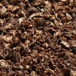 ground dandelion root